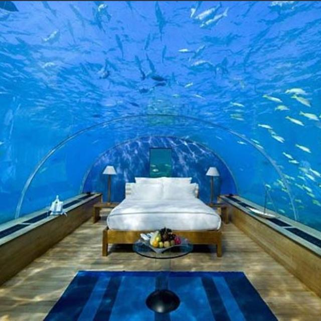 Aquarium bedroom Amazing Rooms Pinterest