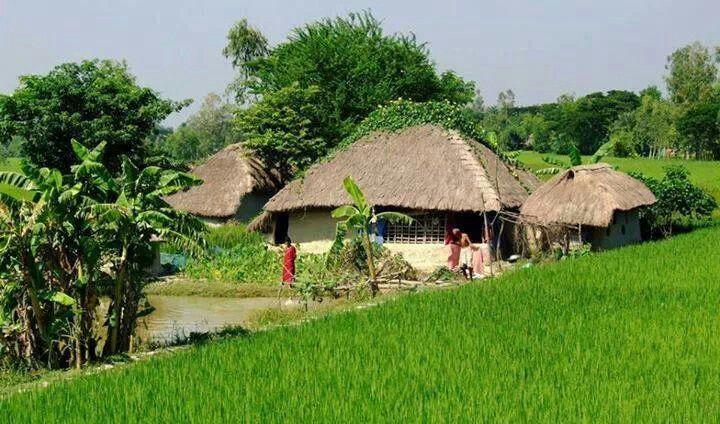 Village hut life in bangladesh bangladesh pinterest for Beautiful house in bangladesh