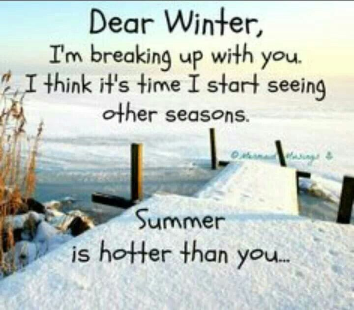 Funny Winter Quotes And Sayings. QuotesGram