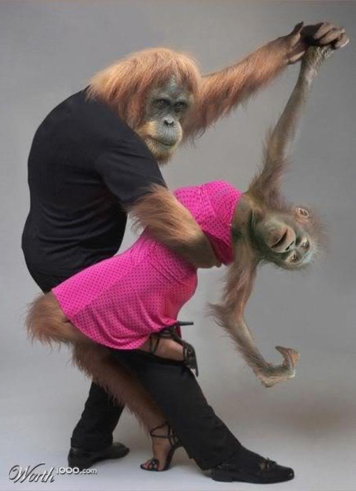valentines humor images