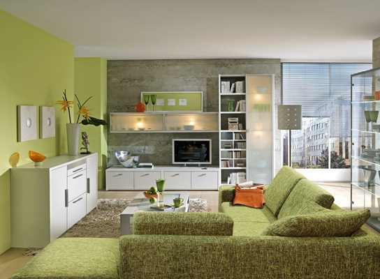Green Living Room Google Search For The Home Pinterest