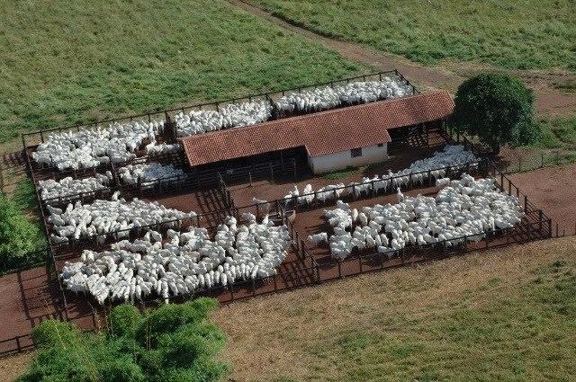 Fotos da fazenda Vera Cruz