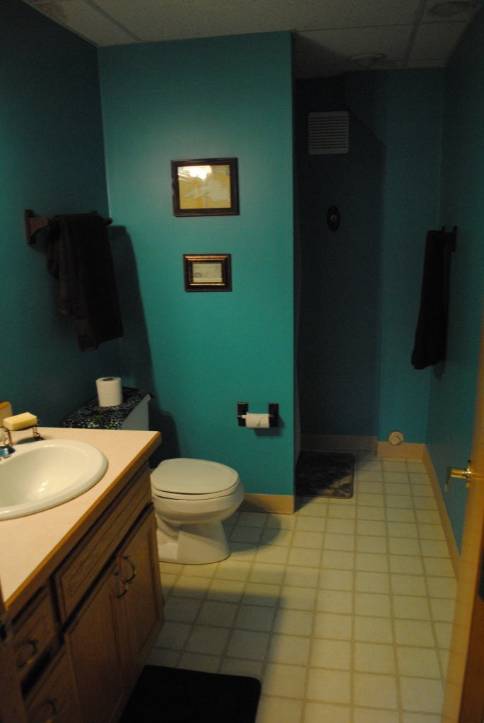 Bathroom Ideas Teal : Teal and brown bathroom for the home