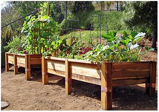 Garden Boxes kitchen gardens Pinterest