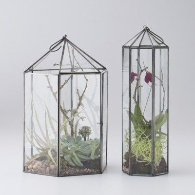 Glass terrariums from School House Electric & Supply $45