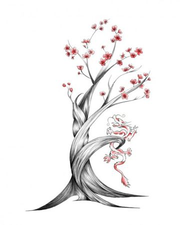 How To Draw A Cherry Blossom Tree In Pencil Cherry blossom tree drawings