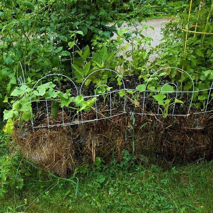 straw bale gardening Raised Veggie Beds Pinterest