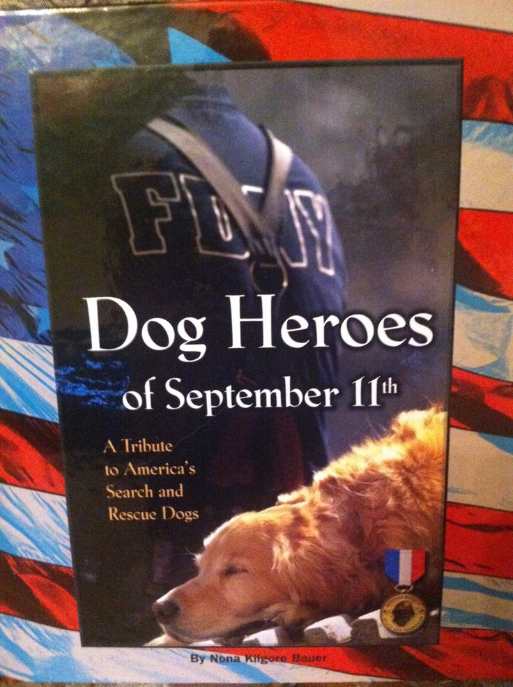 Great book on the dogs of September 11th.
