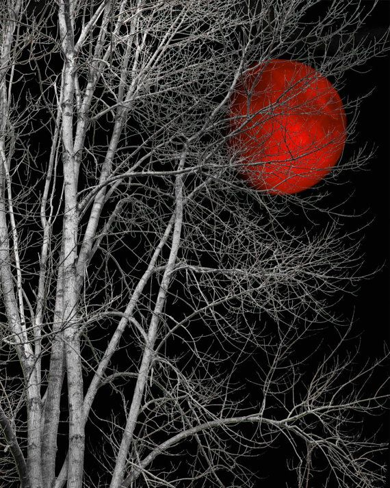 Large Matted Black And White Tree Red Moon Home Decor Wall