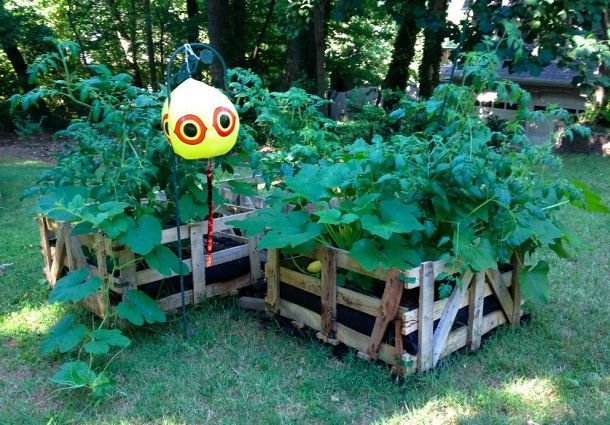 ... .com/442671/turn-used-pallet-crates-into-raised-bed-gardens-so-easy