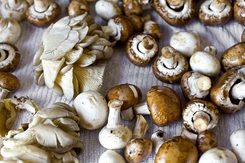 over-the-top mushroom quiche | smitten kitchen - via http://bit.ly ...