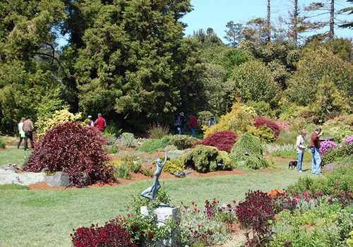 Pin By 101 Things To Do On 101 Things To Do Mendocino County Pinter