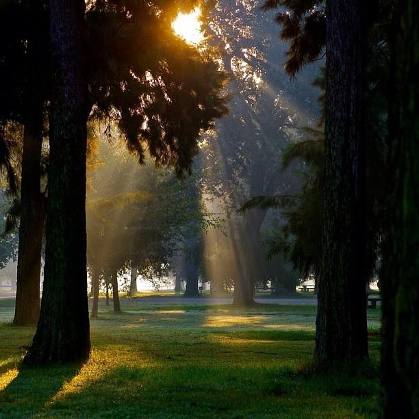 christian single men in oak grove Online dating in oak grove for free the only 100% free  i am a christian  clarksville tennessee joyc87 30 single woman seeking men.