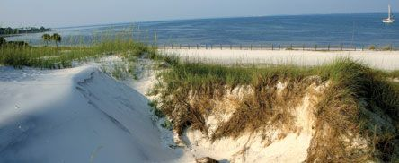 Sand dunes line the beach. Photo by Christie Long.