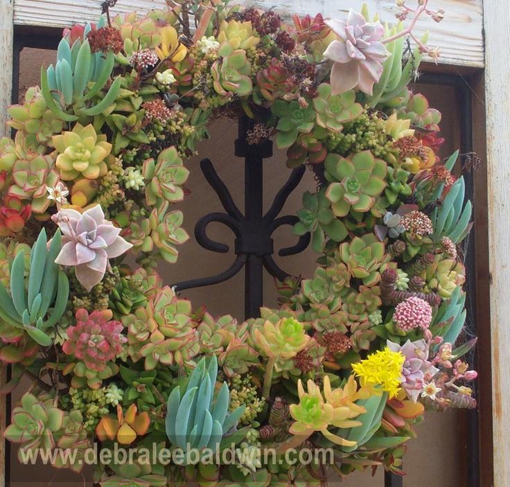 Pin by debra lee baldwin on succulent wreaths and topiaries pintere - Succulent container gardens debra lee baldwin ...