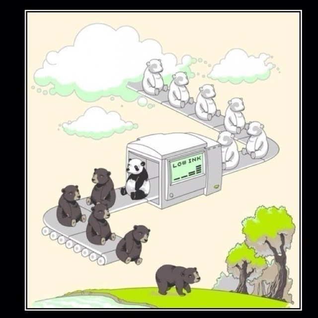 Origin The Panda