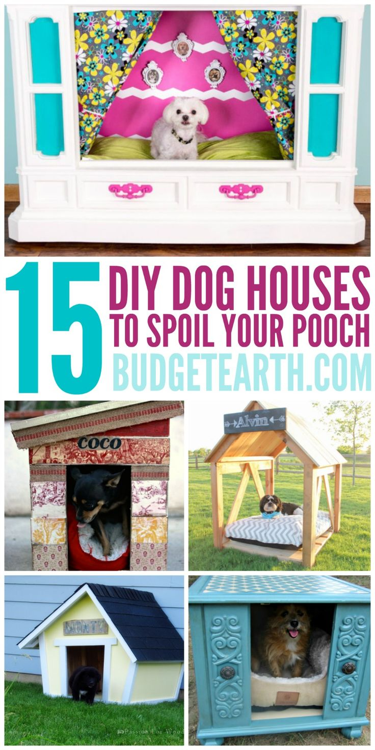 12 Adorable DIY Dog Beds Your Pooch Will Love