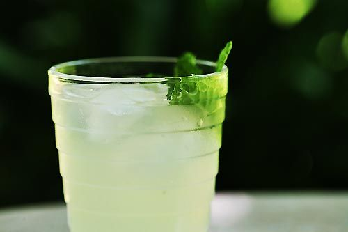 Limeade with a Touch of Mint on Simply Recipes. A little vanilla adds ...