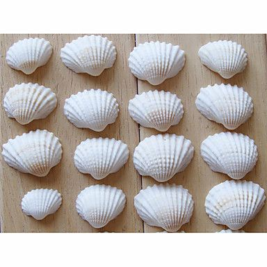 ... Decorations | Beach Themed Seashell Wedding Shower Table Decorations