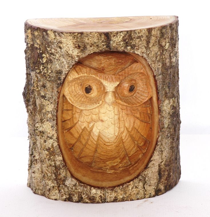 Owl carving twigs pinterest