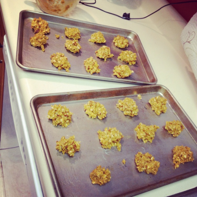 Pumpkin spiced oatmeal and pecan cookies :) yumm so good, they are in ...