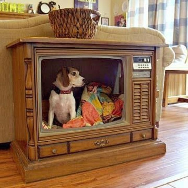 Make Your Home Indoor Dog House The Best Way To Keep