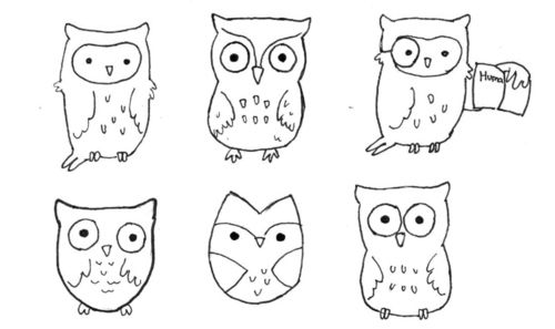 cute easy way to draw owls drawings pinterest