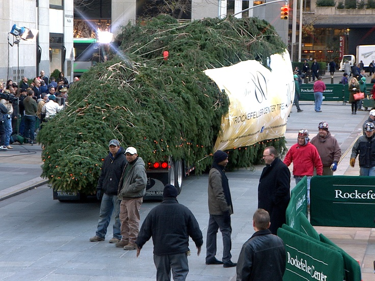Rockefeller Christmas tree arrives from New Jersey