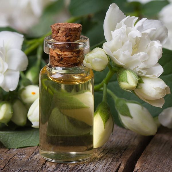 Jasmine oil beauty benefits and usage in body care