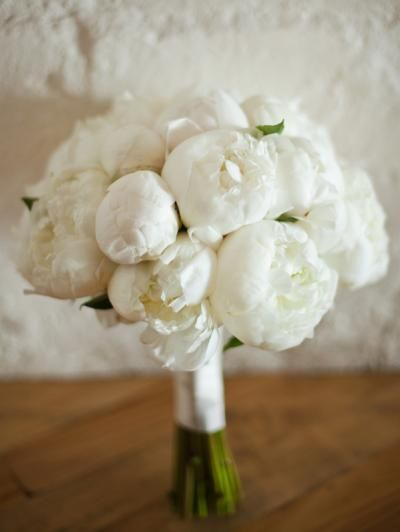 Classic white peonies These are my FAVORITE flower and they SMELL AMAZING the whole night