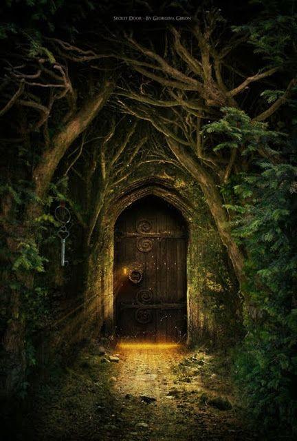 Mystical doorway tree and plant art pinterest for The magic fairy door