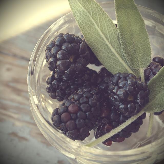 blackberry/sage lemonade | Recipes - | Pinterest