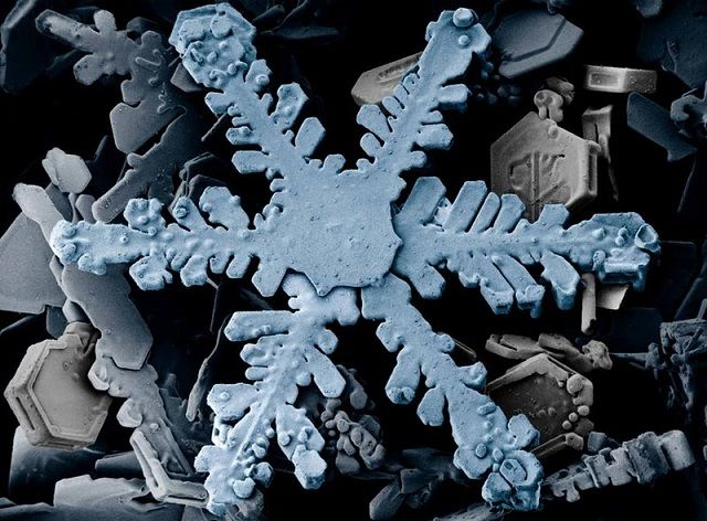 snowflake under electron microscope lil bit of