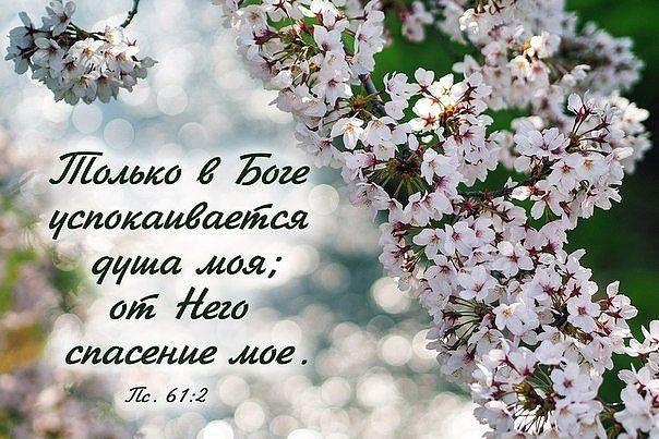 Христианские открытки с цитатами из библии 94