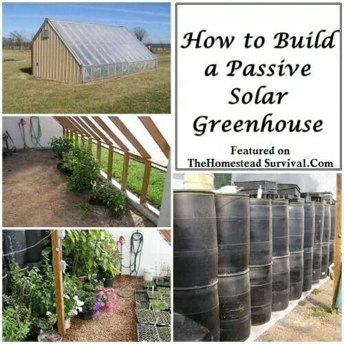 Passive solar greenhouse gifts and clothing pinterest for How to build a passive solar house