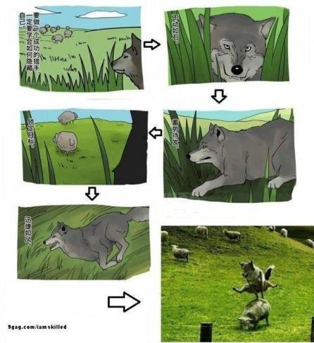 늑대가 양에게 '진짜' 원했던 것 http://i.wik.im/77554