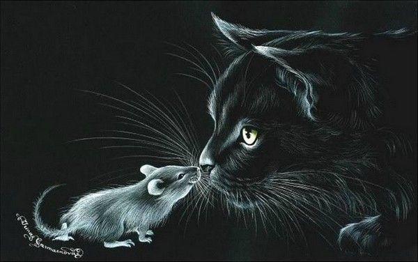 Вышивка крестом коты на черном 295