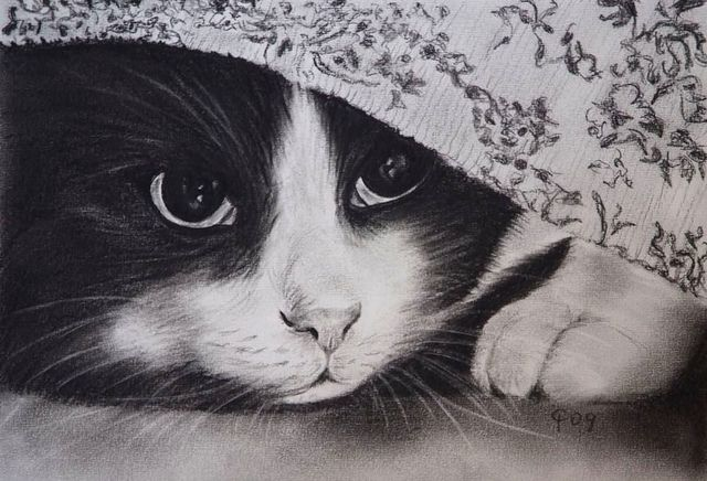 Charcoal drawing charcoal drawings and illustrations pinterest