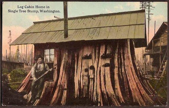 Washington State Vintage 1913 Postcard Log Cabin Home In
