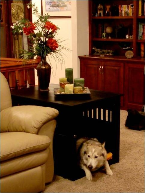 Dog Crate End Table