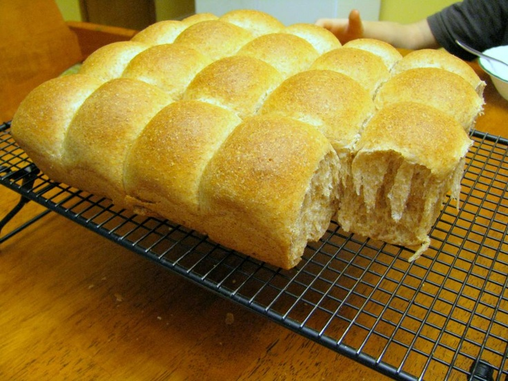 whole wheat dinner rolls | food & recipes: meals | Pinterest