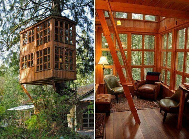 The adult tree house tree house living pinterest for Adult treehouse plans