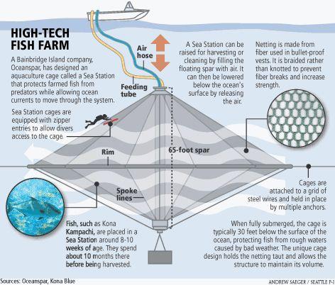 High - Tech fish farm