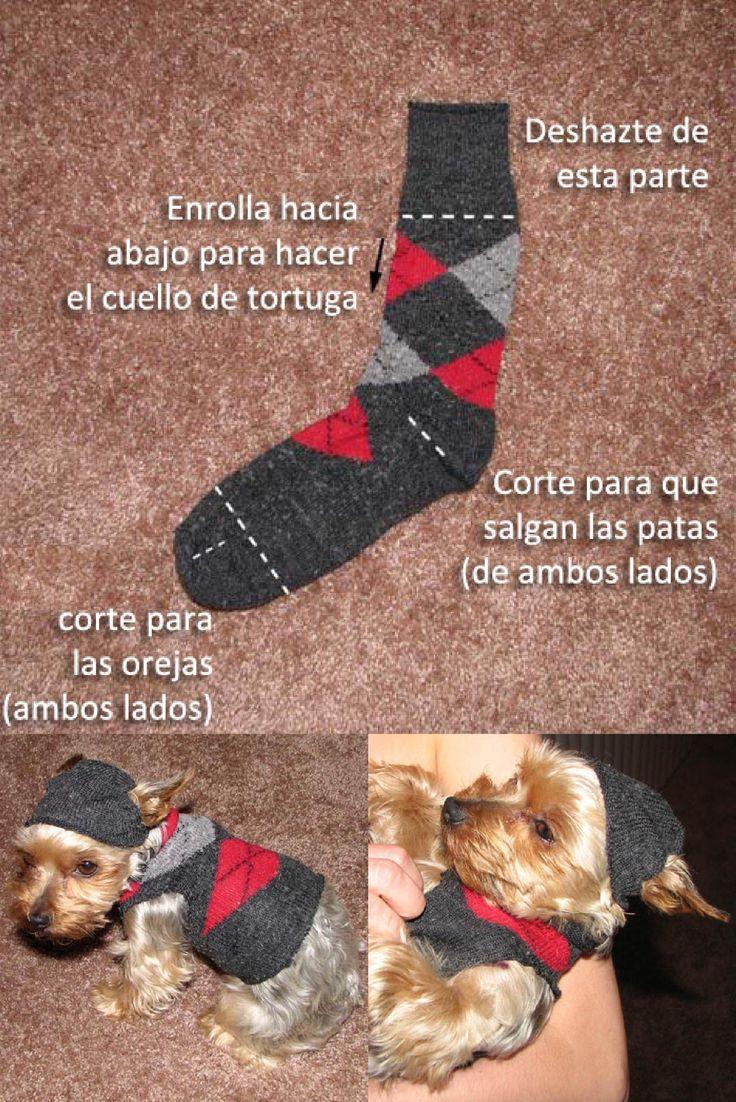 Como hacer un sueter para perros chihuahua english for Construir piscina para perros