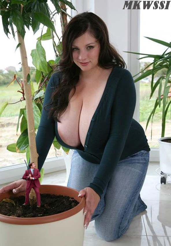nadine-j. - Recherche Google | boobs | Pinterest ...
