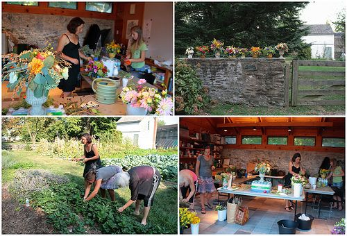 Urban Farm Backyard Ideas : urban farm cute blog  Garden Ideas  Pinterest