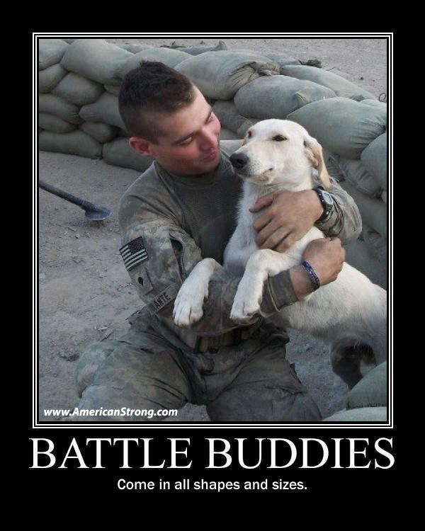 battle buddy 2,152 followers, 6,313 following, 466 posts - see instagram photos and videos from kevin lee raymond (@battlebuddyusa).