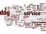 Wordle: Service Dogs: A Way of Life Word Cloud