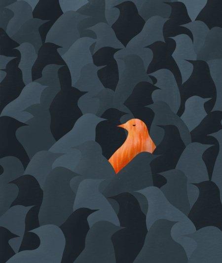 Rare Bird | Daniel Horowitz