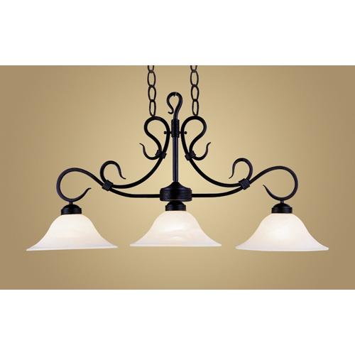 black light fixture over island mudroom deck garden chicken. Black Bedroom Furniture Sets. Home Design Ideas
